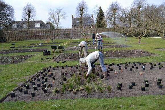 Bloementuin aangelegd de tuin in vier seizoenen for Www bloem en tuin nl