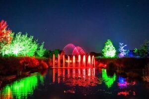 Mystery Gardens in Lights