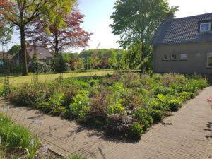 Duizelse Open Tuinen Weekend