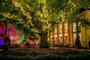 Hortus by night