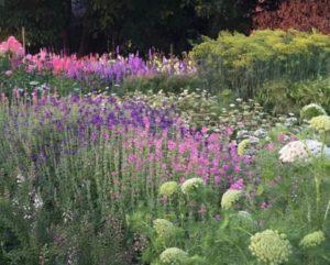 Open tuin Zinna&CO 16 juni