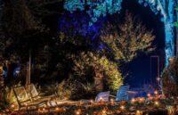 Mystery gardens Appeltern