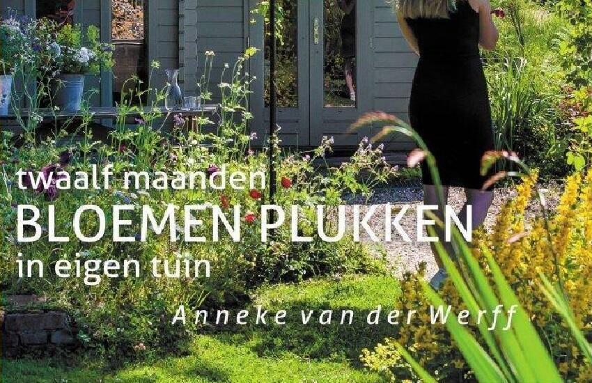 Twaalf maanden BLOEMEN PLUKKEN in eigen tuin - Anneke van der werff