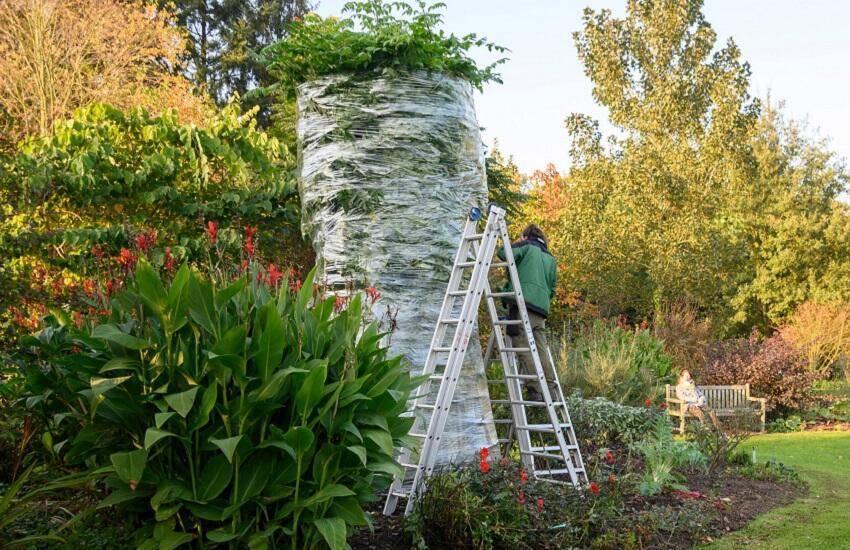 Arboretum Kalmthout boom in plastic