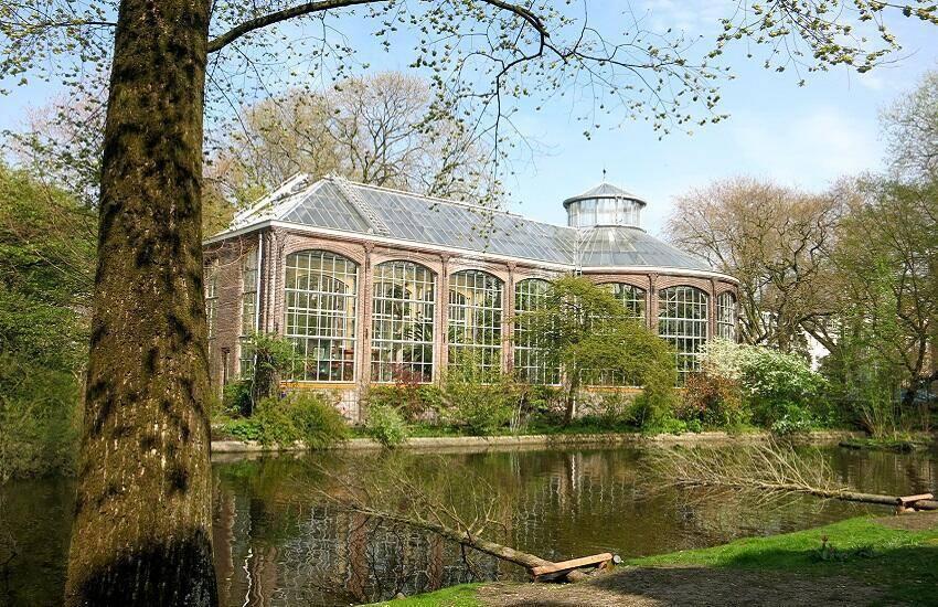 Monumentale Palmenkas HortusAmsterdamS