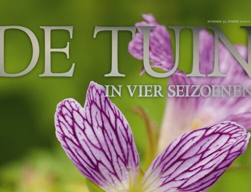 Ons zomernummer is uit