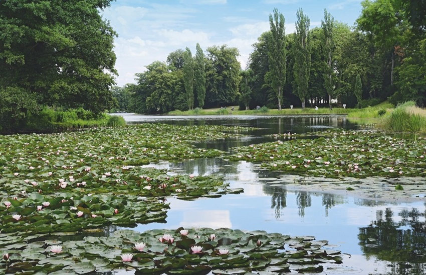 Worlitz Gartentraume