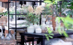 Tuincentrum Huiting fotografie┬® KLEUR EN GROEN