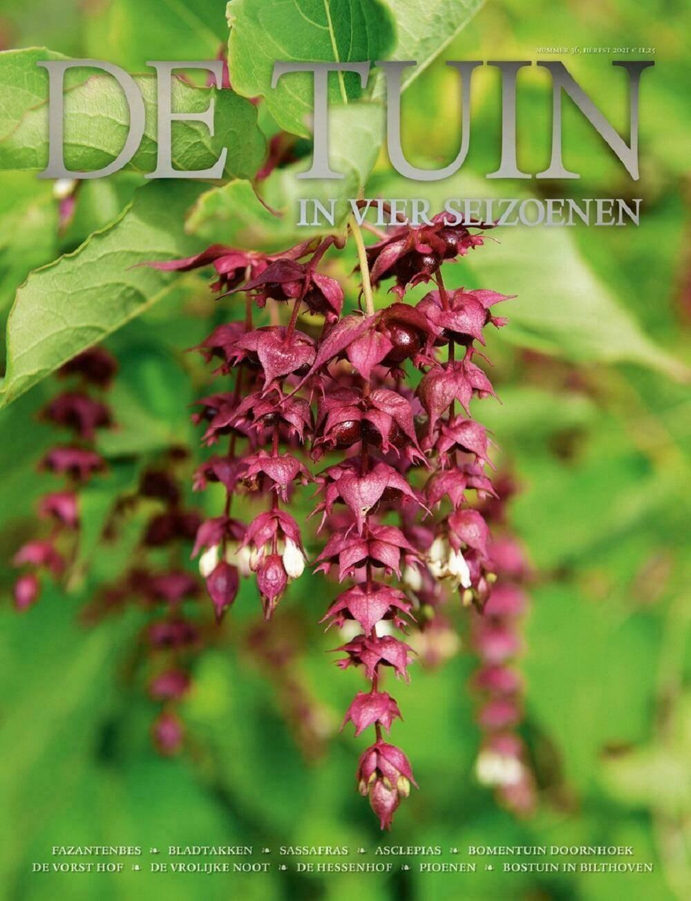 De Tuin in vier seizoenen 36 Herfstnummer